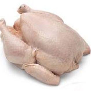 Peluang Bisnis Ayam Potong dan Analisa Usahanya