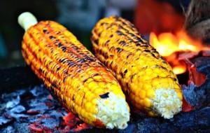 jagung bakar pengusahasukses